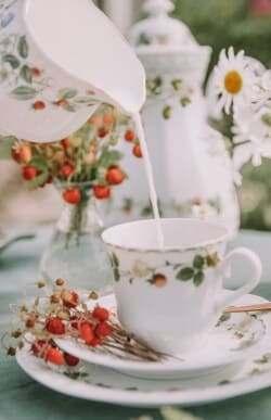 Tea time in Britain milk first or tea first